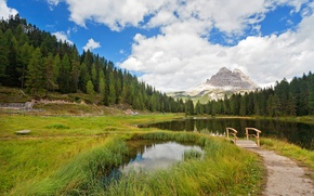 Picture forest, grass, clouds, trees, mountains, lake, pond, Italy, the bridge, path, South Tyrol