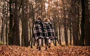 Picture autumn, forest, girls, plaid, cold