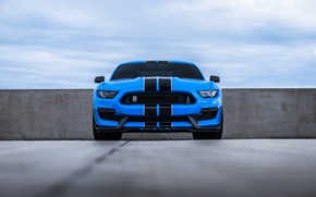 Wallpaper Sight, Mustang, Blue, Ford, Cobra, Front, Face