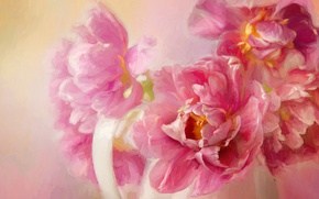 Picture flowers, background, pink, figure, bouquet, picture, petals, art, pink, pitcher, painting, gently, strokes, peonies, composition