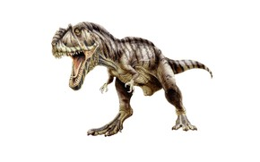 Picture dinosaur, predator, mouth, tail, fangs