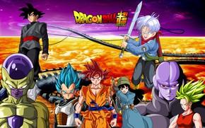 Picture DBS, game, anime, manga, Son Goku, Vegeta, Dragon Ball, Goku, Trunks, Hit, Freeza, Dragon Ball …