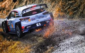 Wallpaper Auto, Sport, Machine, Race, Sparks, Hyundai, Car, WRC, Rally, Rally, i20, Paddon, Hayden Paddon, Hyundai ...