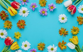 Wallpaper flowers, spring, colorful, Easter, tulips, chrysanthemum, flowers, tulips, spring, Easter, eggs, decoration, Happy, the painted ...