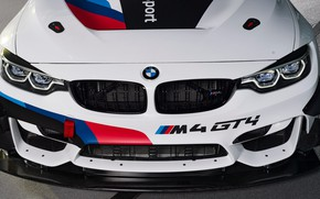 Picture lights, racing car, 2018, GT4, BMW M4