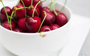 Picture macro, berries, cherry