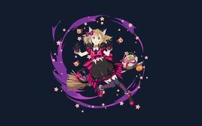 Picture background, girl, sword art online, Sword art online, silica