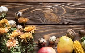 Wallpaper vegetables, flowers, greens, eggs