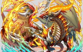 Picture dragon, art, Bakugan