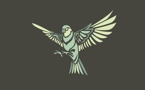 Picture the dark background, bird, minimalism