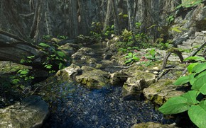 Picture nature, stream, stones, vegetation, Enchanted Beauty PW