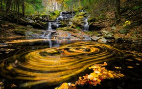 Picture autumn, leaves, trees, yellow leaves, waterfall