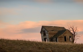 Picture field, the sky, house, the evening