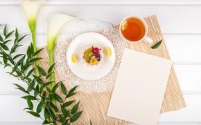 Picture flowers, tea, Breakfast, Koala, branch greenery