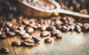 Picture background, coffee, grain