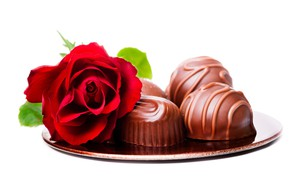 Picture flower, red, rose, candy, white background, chocolate