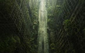 Picture landscape, the city, postapokalipsis