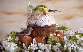 Picture cherry, Easter, birds, cake, glaze, eggs