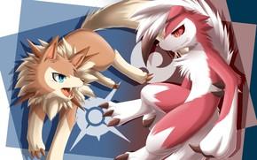 Picture game, fox, animal, Pokemon, Pokémon Sun & Moon, Pokémon, Pokémon Sun and Moon