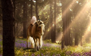 Picture forest, flowers, nature, owl, horse, fantasy, by ellipsiem