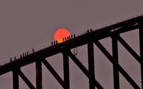Picture sunset, silhouette, Australia, Sydney, Harbour Bridge