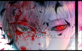 Picture blood, guy, Tokyo Ghoul, Ken Kanek, by kuroe