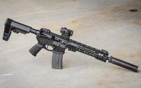Picture American, AR-15, a semi-automatic rifle