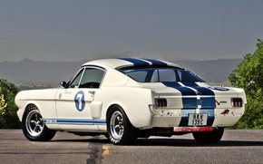 Picture Mustang, Ford, Shelby, GT 350