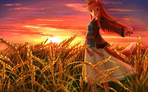 Wallpaper Ears, Field, Anime, Red hair, Tail, Sun, Horo, Field, Red head, Holo, Spice and wolf, ...