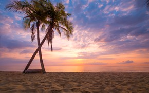 Picture sand, sea, wave, beach, summer, sunset, palm trees, shore, summer, beach, sea, sunset, seascape, beautiful, …