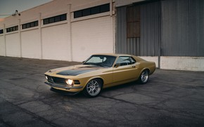Picture Mustang, Ford, Performance, Wheels, HRE, Bronze