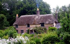 Picture England, Nature, Garden, House