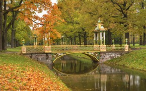 Picture autumn, trees, bridge, pond, Park, Saint Petersburg, Pushkin