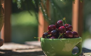 Picture cherry, berries, Cup