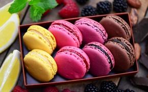 Picture berries, raspberry, box, lemon, cookies, BlackBerry, macaroon