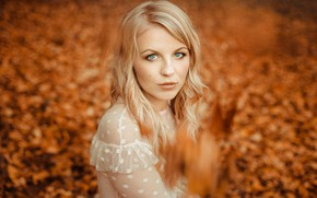 Picture look, face, hair, blonde, bokeh