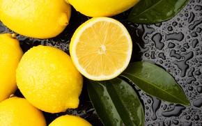 Picture leaves, drops, lemon