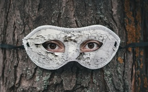 Picture eyes, tree, mask
