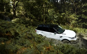 Picture road, forest, vegetation, dirt, Land Rover, black and white, Range Rover Sport P400e Plug-in Hybrid