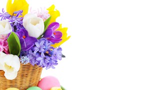 Picture flowers, spring, Easter, tulips, hyacinths