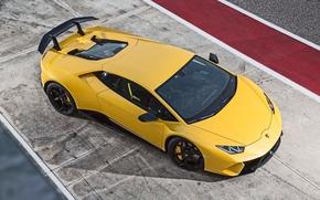 Picture Lamborghini, logo, Huracan, Huracan Performante, Lamborghini Huracan Performance