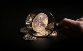 Picture magnifying glass, business, bitcoin