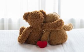 Picture bear, teddy, toy, heart, love, romantic, pair, cute, bear, love, heart