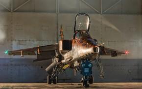 Picture weapons, Jaguar, the plane