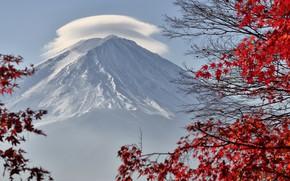 Picture cloud, Japan, red leaves, Fuji, Fuji, Takashi