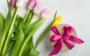 Picture bouquet, tulips, love, bow, fresh, flowers, romantic, tulips, gift