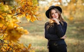Picture autumn, look, girl, branches, tree, mood, hat, oak, Bogdan, Olga Boyko