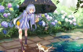 Picture cat, girl, rain, umbrella, Vocaloid