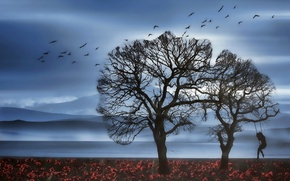 Wallpaper landscape, swing, nature, silhouette, girl, birds, tree