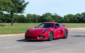 Wallpaper Porsche, Cayman, GT4